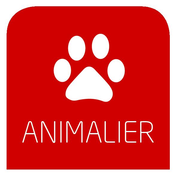 photo animalier